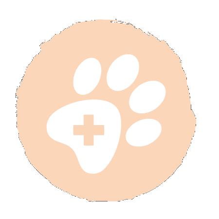 Weiße Paws & Patch Logo Tatze auf farbigem Icon