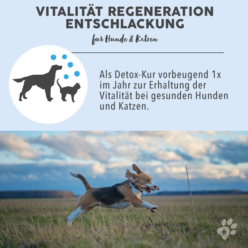 1_BB-Vitalita¨t-Vorteil-2.jpg